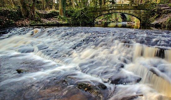 Rivelin River Footbridge by John Dunbar