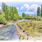 Waipara River by Phoxford
