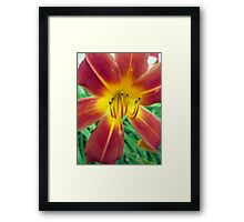 Peachy Framed Print