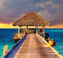 Maldives Sunset  by Maxwell Campbell