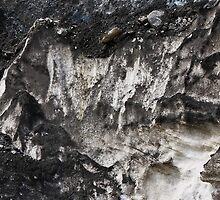 Athabasca Glacier .4  by Alex Preiss