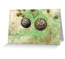 Spiky Balls Greeting Card