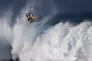 The Art Of Surfing In Hawaii 10 by Alex Preiss