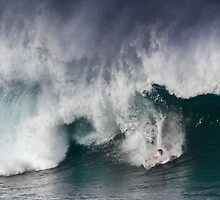 The Art Of Surfing In Hawaii 11 by Alex Preiss