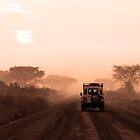 Range Rover on Safari by Hannah Nicholas