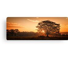 Mullumbimby Sunset Canvas Print