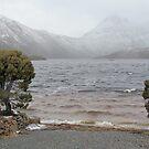 Dove Lake in Winter by Ian Ker
