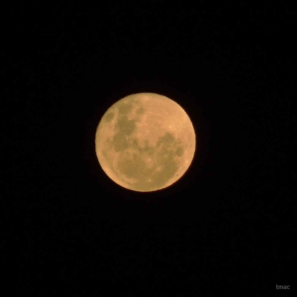 20121129 - Bushfire Moon - ACT by tmac