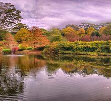 Secret Garden - Mount Wilson, NSW Australia - The HDR Experience by Philip Johnson