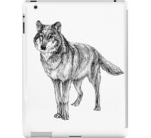 Grey wolf illustration iPad Case/Skin