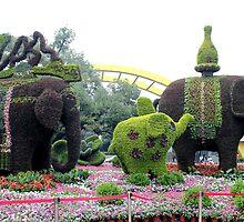 Topiary, Hangzhou, Zhejiang by DaveLambert