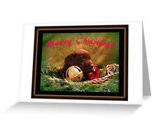 Merry Christmas Chocolate Puppy! Greeting Card