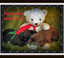 Busy day wasn't it! by DennisThornton