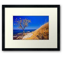 autumn coast line Framed Print