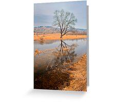 tree portraite in November Greeting Card