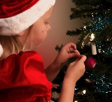 Time to dress the tree by wendywoo1972
