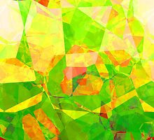 Abstract Polygons 205 by Christopher Johnson