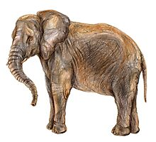 Illustration of african elefant Photographic Print