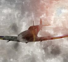 Supermarine Spitfire by Liam Liberty