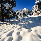 Deep In Snow At The Flatirons by nikongreg