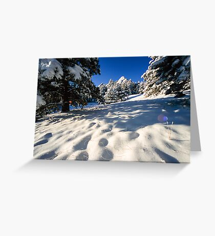 Deep In Snow At The Flatirons Greeting Card