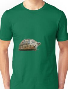 Sideview of A Walking Turkish Tortoise Isolated Unisex T-Shirt