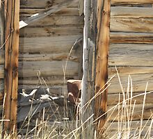 old cabin by wyodew