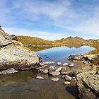 Alpine Pond by Walter Quirtmair