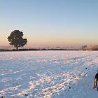 Winter Wonderland Walk by KMorral