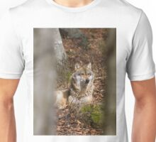 Wolf sitting in the sunshine Unisex T-Shirt