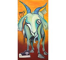 Crazy Goat Photographic Print