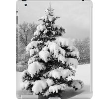 Winter Wonderland iPad Case/Skin