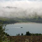 Sea fog on the Erme Estuary, South Hams, Devon, UK by silverportpics