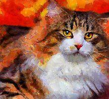 norway cat by bogfl