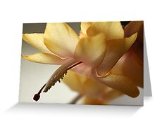 Golden Fancy Greeting Card