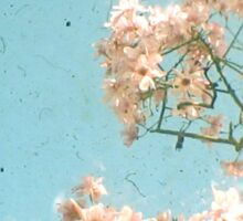 Magnolia Tree Sticker