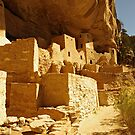 Cliff Palace, Mesa Verde by Paul Magnanti