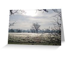 Frost In December Greeting Card