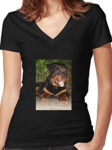 Beautiful Adolescent Female Rottweiler In Garden Women's Fitted V-Neck T-Shirt