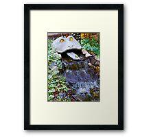 Forrest Frog Framed Print