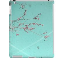 A Kiss in the Sky iPad Case/Skin