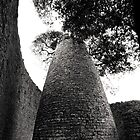The Conical Tower Great Zimbabwe II by Adrian Park