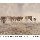 Lobo &amp; Sandy&#x27;s herd, kicking up the dust, Reno, NV by Ellen  Holcomb
