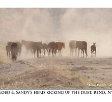 Lobo & Sandy's herd, kicking up the dust, Reno, NV by Ellen  Holcomb