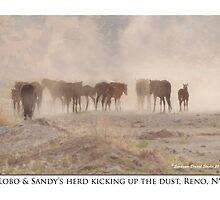 Lobo & Sandy's herd, kicking up the dust, Reno, NV by Ellen  Holcomb