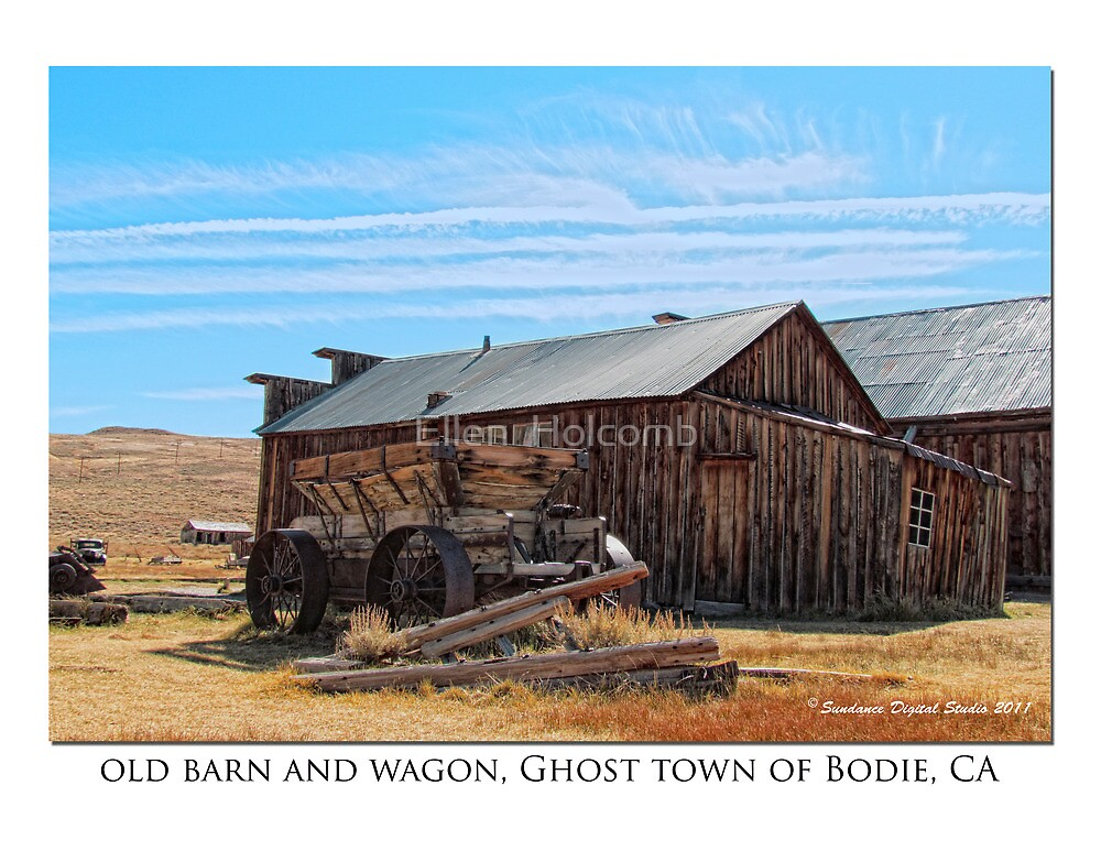 Old Barn and wagon, Ghost town of Bodie, CA by Ellen  Holcomb