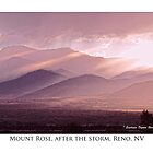 Mt. Rose, Reno, NV after the storm by Ellen  Holcomb