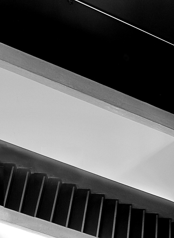 Diagonals by Paul Pasco