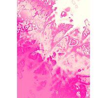 Fuchsia Genesis Photographic Print
