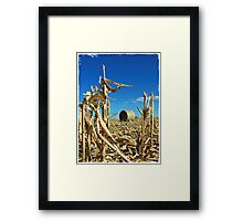 Remains of the Harvest Framed Print